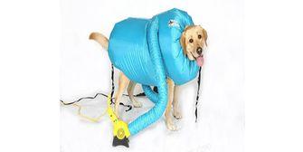 AliExpress hondendroger