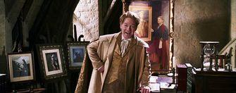 Harry Potter Professor Lockhart