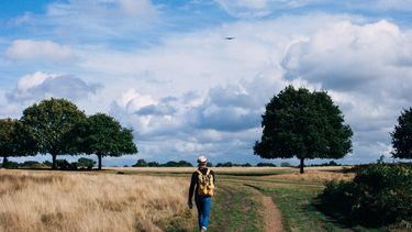 wandeling hiken