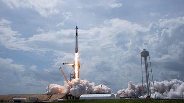 SpaceX Crew Dragon NASA baby