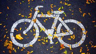 e-bike elektrische fiets kruidvat