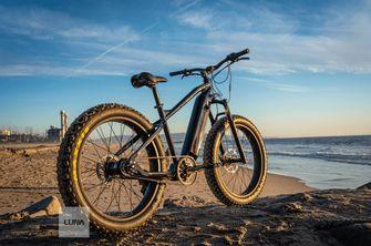 Luna Cycle Fat BABE elektrische fiets