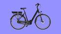 betaalbare elektrische fiets e-bike Vyber Ride E1 Special Edition