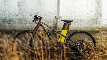 WhaTTfornow elektrische fiets