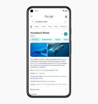 Nieuw design Google-zoekmacine