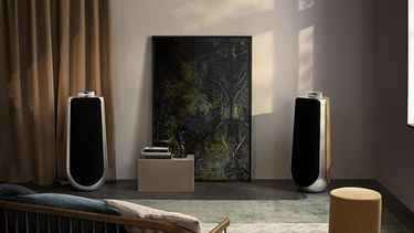 Bang & Olufsen BeoLab 50 speaker