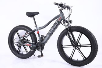 elektrische fiets Akez AliExpress