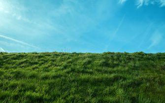 Aliens buitenaardse wezens groen gras
