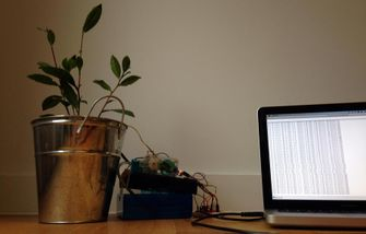 Raspberry Pi Planten project