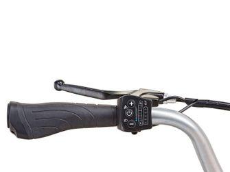 Prophete Lidl elektrische fiets