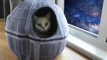 dronken geshopt: Death Star kat