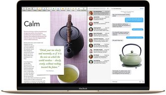 Macbook Spit View