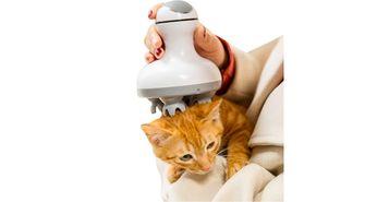 kattenmassage apparaat