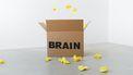 hersenen onderzoek herinnering