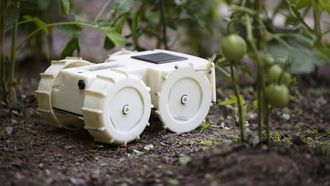 Tertill robot
