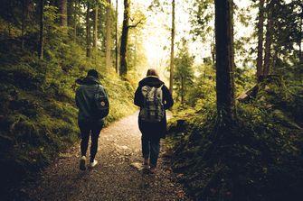 Wandelen hiken