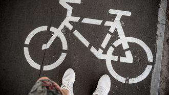 Elektrische fiets Kruidvat