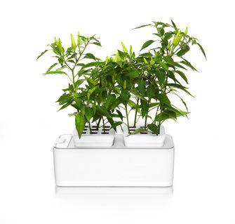 Slimme plantenbak