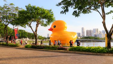 badeend rubber duck