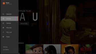 Netflix redesign