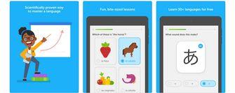Duolingo taal leren