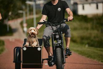 elektrische fiets zijspan