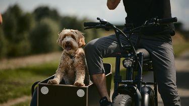 Sidecar Phatfour elektrische fiets