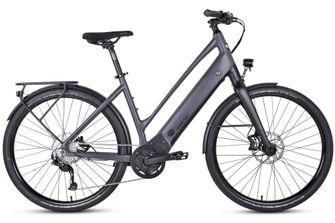 elektrische fiets Ride1Up