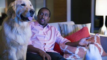 Netflix huisdieren