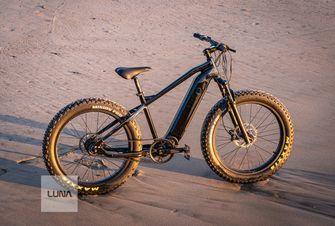 elektrische fiets Luna Cycle