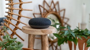 Google Home Mini on a wooden table with green plants in the background