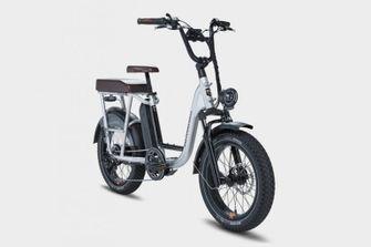 Radrunner Rad Power bikes e-bike