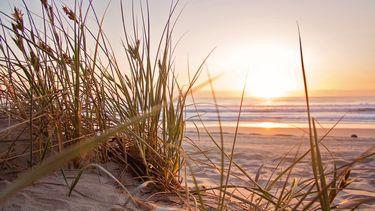 zomer strand warmte