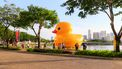badeend rubber duck