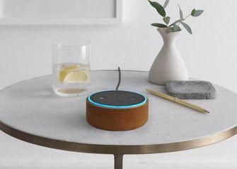 Echo Dot slimme Bluetooth speaker