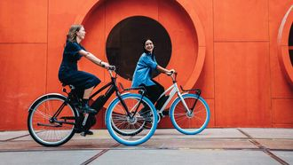 Swapfiets elektrische fiets
