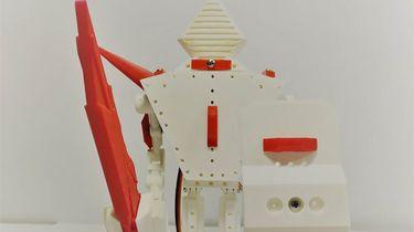 Aiko vechtrobot