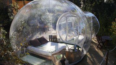 aliexpress dome