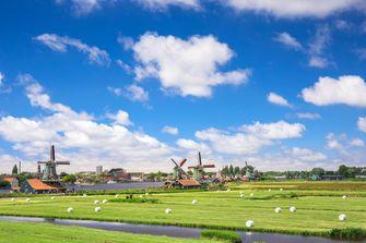 molens Nederlands landschap
