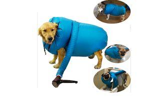 honden gadget AliExpress