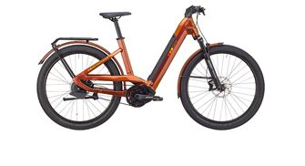 Bergstrom GRX 880 elektrische fiets