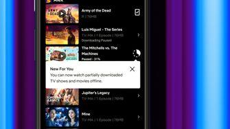 Netflix offline downloaden